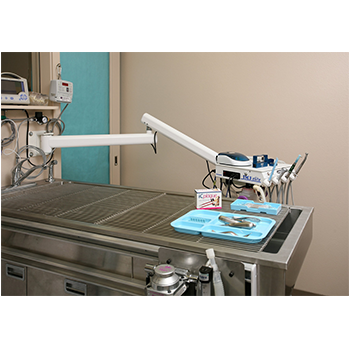 iM3 GS Deluxe Dental unit with oilfree compressor | iM3 Vet Ltd