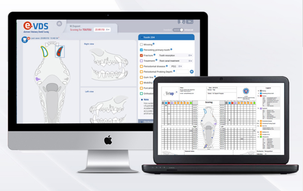 e-VDS Plus - Dental Charting System - 1 Year Subscription